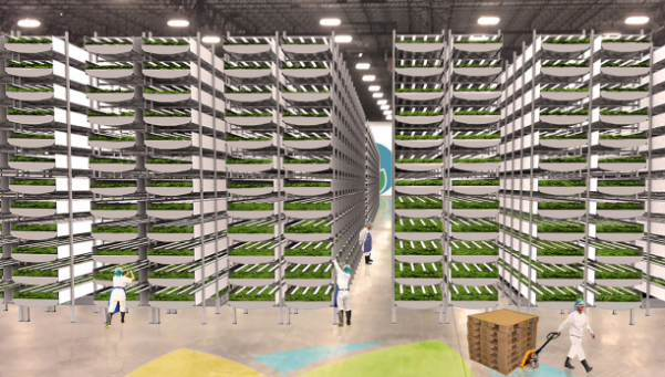 AeroFarms takes viewers inside their plans to build the world's largest vertical farm in Newark, NJ.