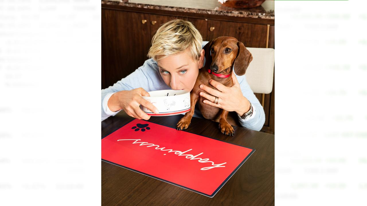 Daytime's Ellen DeGeneres launches her first dog line with PetSmart.