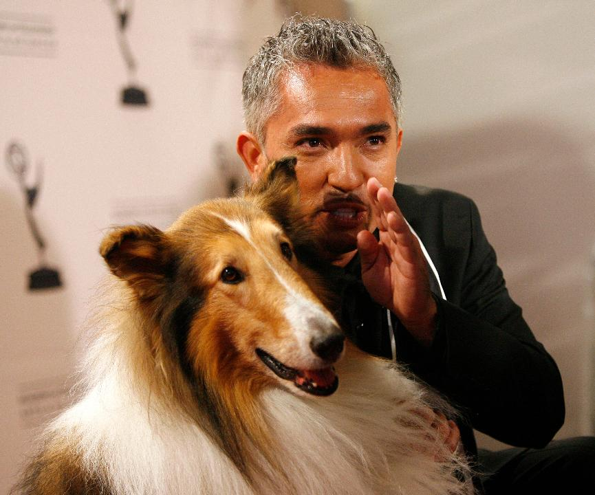Expert dog trainer, Cesar Millan (the Dog Whisperer) shares insight on his success, coming back from failure and his new show.