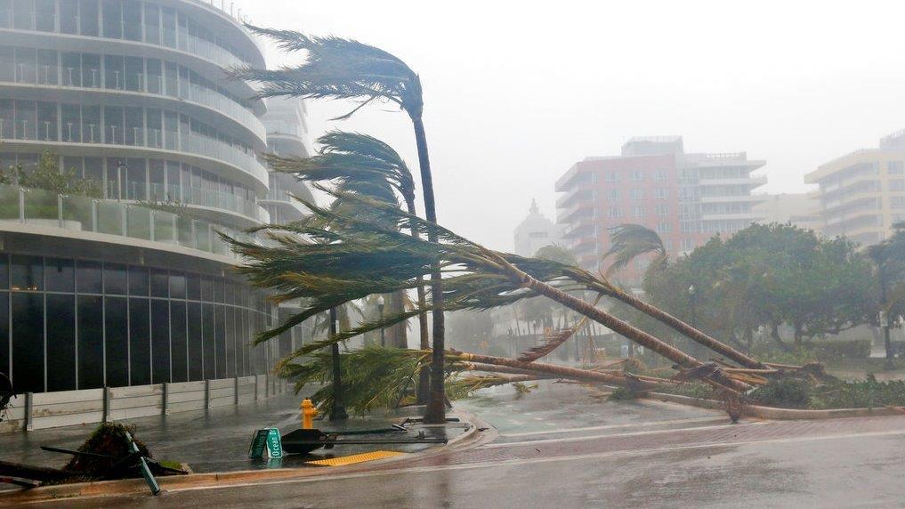 Mayor of Miami Beach  Philip Levine on the impact of Hurricane Irma.