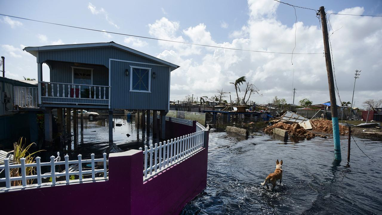 APR Energy CEO and chairman John Campion discusses what his company is doing to help restore power in Puerto Rico, which remains largely without it after the devastating Hurricane Maria struck the island.