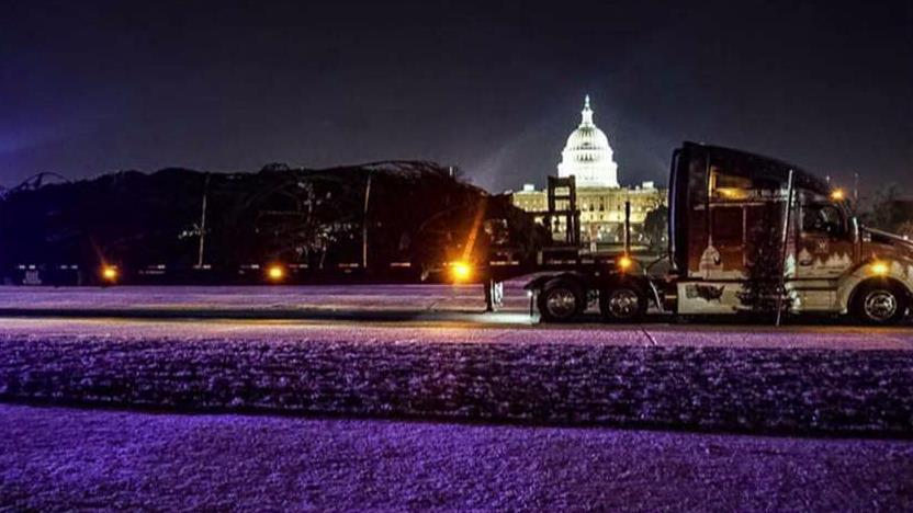 Lawrence Spiekermeier, the truck driver who transported the national tree to the U.S. Capitol, says it was the highlight of his career.