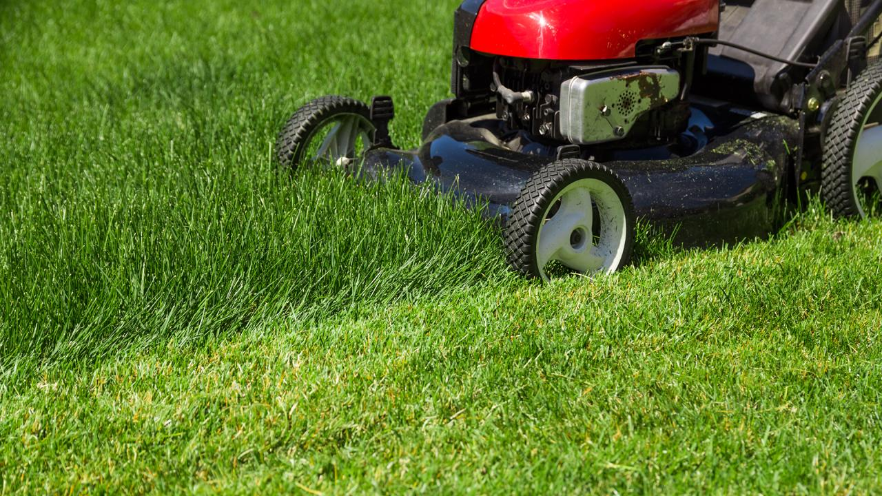 Green Worx Founder and CEO RJ Duarte, a high school student, discusses how he started a lawn mowing business, which now employs more than five full-time employees and -- at its busiest -- 14.