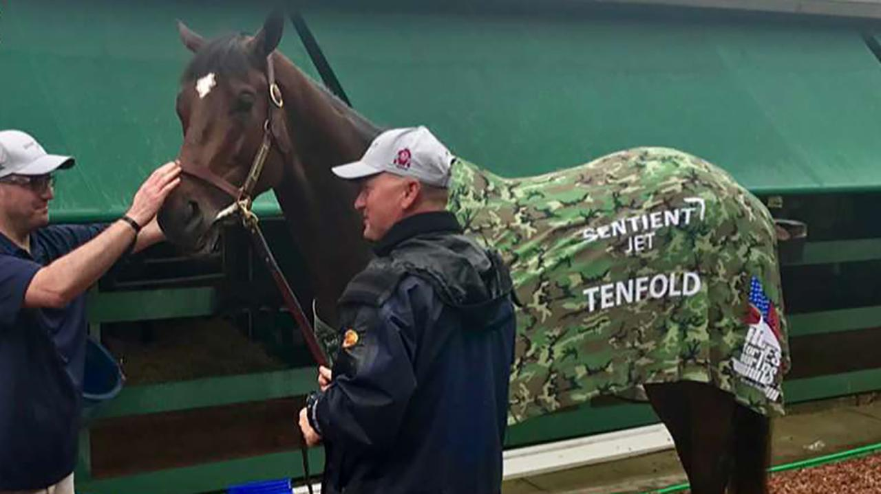 "Sentient Jet sponsors three-year-old horse Tenfold, who will be running for nonprofit organization ""Homes For Our Troops."""
