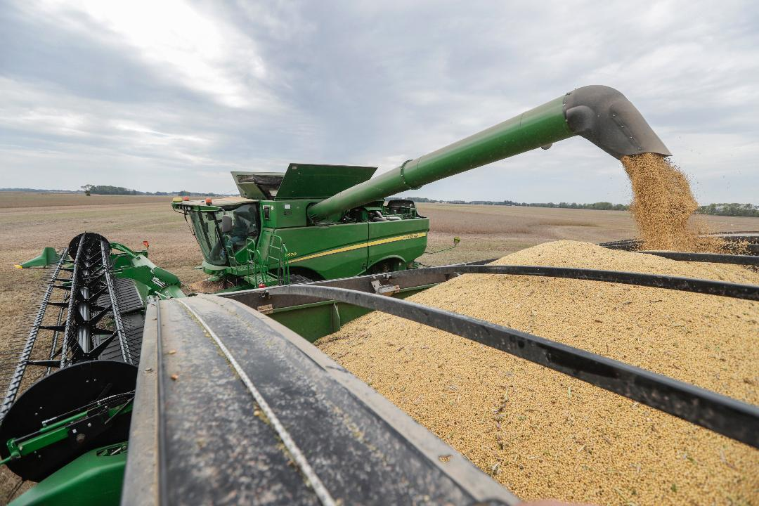 FBN's Connell McShane interviews Iowa soybean farmer Ron Heck about how President Trump's trade war with China has impacted the price of soybeans.