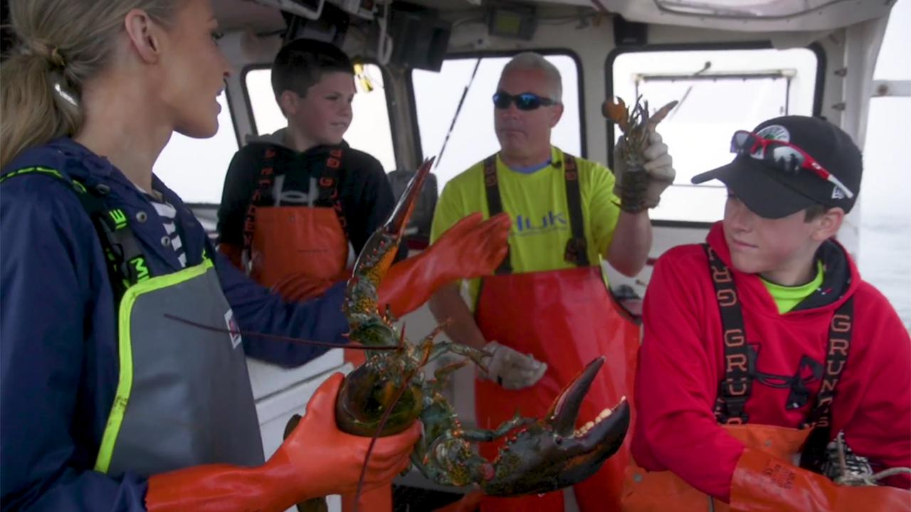 Members of the Beal family of Jonesport, Maine have been getting up before the sun for generations to catch lobsters. Fox News' Carley Shimkus explores the hidden secrets behind the family business success.