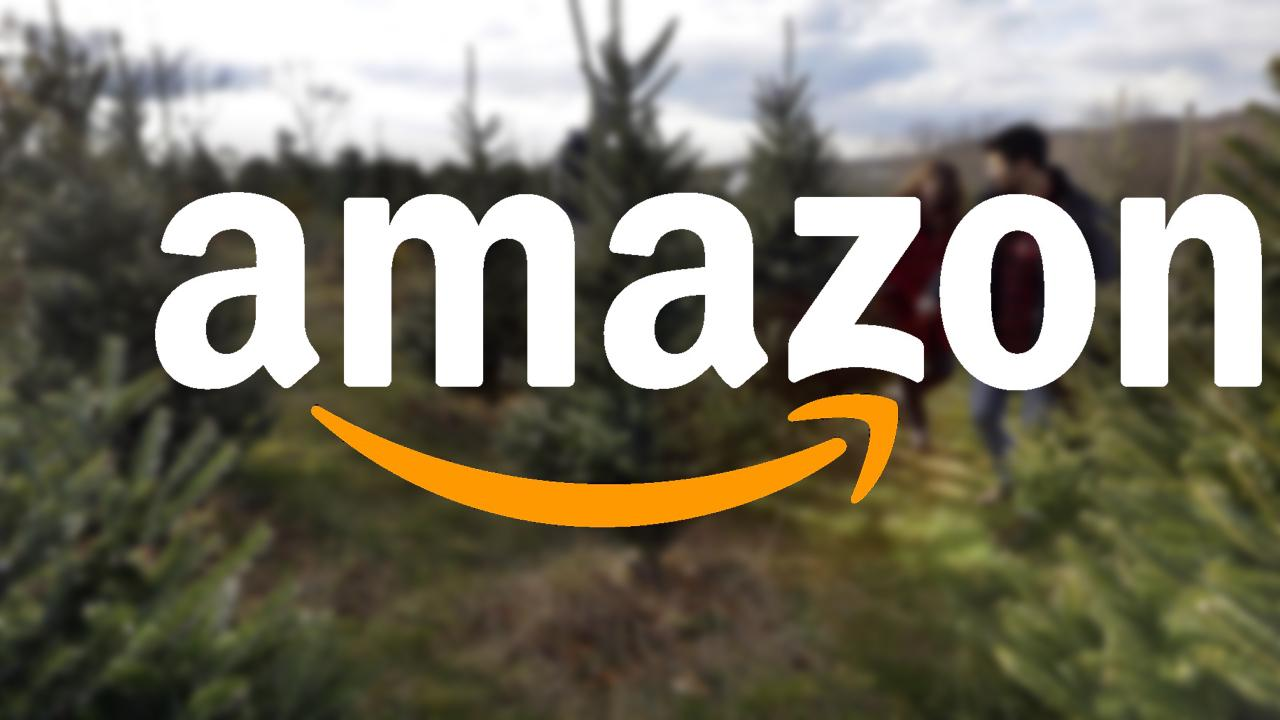 Morning Business Outlook: Amazon is now delivering fresh Christmas trees ranging in price from $20 to $110; about 45 percent of all Americans have felt pressure to spend more money on holiday gifts than what they're comfortable with.