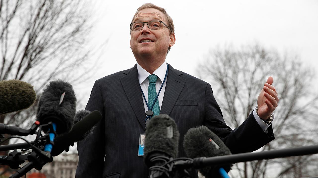White House Council of Economic Advisers Chairman Kevin Hassett discusses how the partial government shutdown is affecting government workers and why the shutdown will not hurt GDP growth in the long-run.
