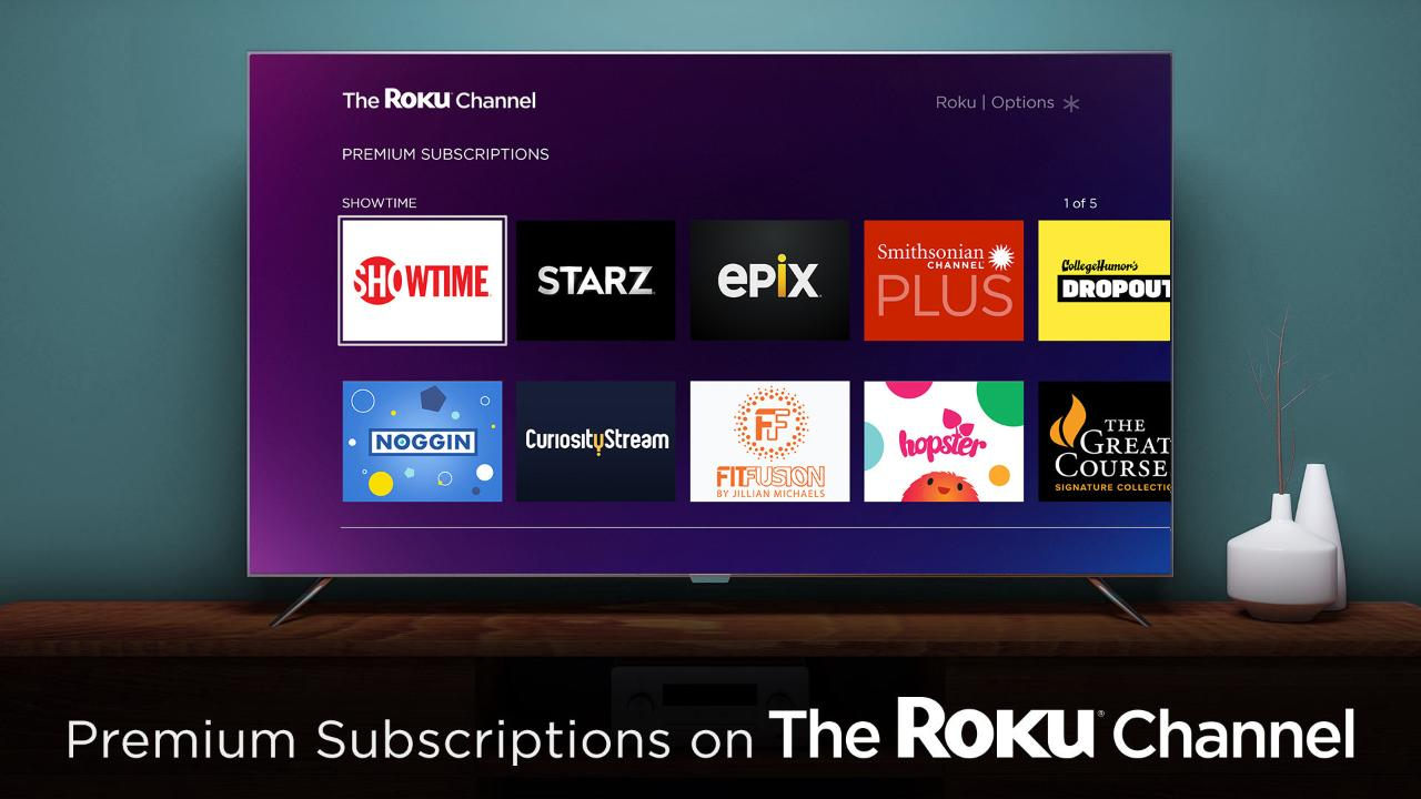 Roku CEO Anthony Wood on the company's new premium subscriptions and consumers' shift toward streaming content rather than traditional TV packages.