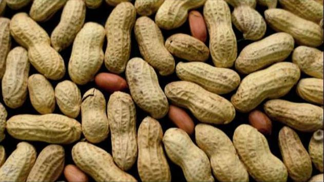 Aimmune CEO Dr. Jayson Dalls on the company's potential tool in the fight against peanut allergies.