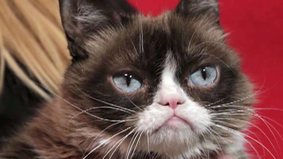 FBN's Cheryl Casone on the death of internet celebrity Grumpy Cat.