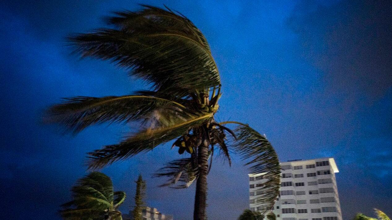 Fox Business Briefs: Analysts at UBS say insurance losses due to Hurricane Dorian could surpass $25 billion.