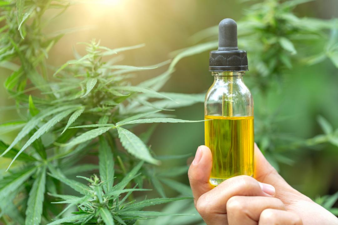 Canndescent CEO Adrian Sedlin on regulating CBD products.