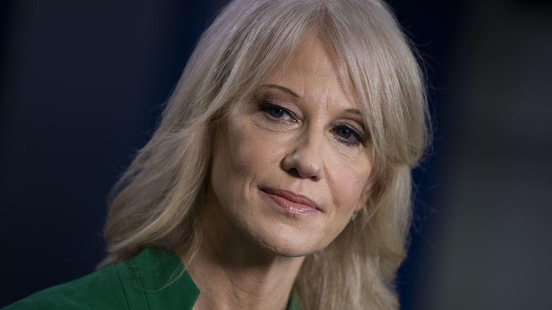 Counselor to the President Kellyanne Conway discusses whether President Trump will weigh in on safety concerns with the Boeing 737 Max jet.