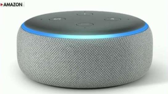 Amazon reported its best-selling devices worldwide included the Echo Dot and the Fire TV stick with Alexa voice remote.