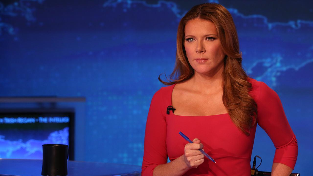 FOX Business' Trish Regan says the Democrats 'have demonized' what it means to be an American.