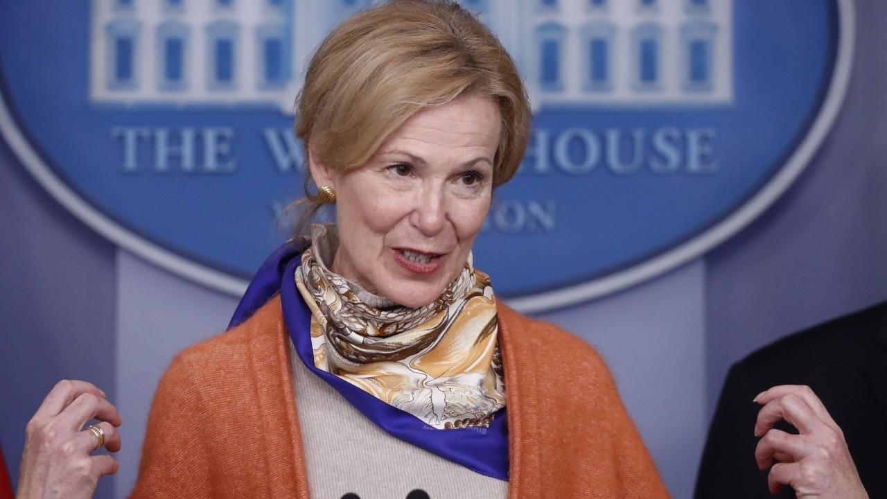 White House coronavirus response coordinator Dr. Deborah Birx says examining coronavirus tests is critical.