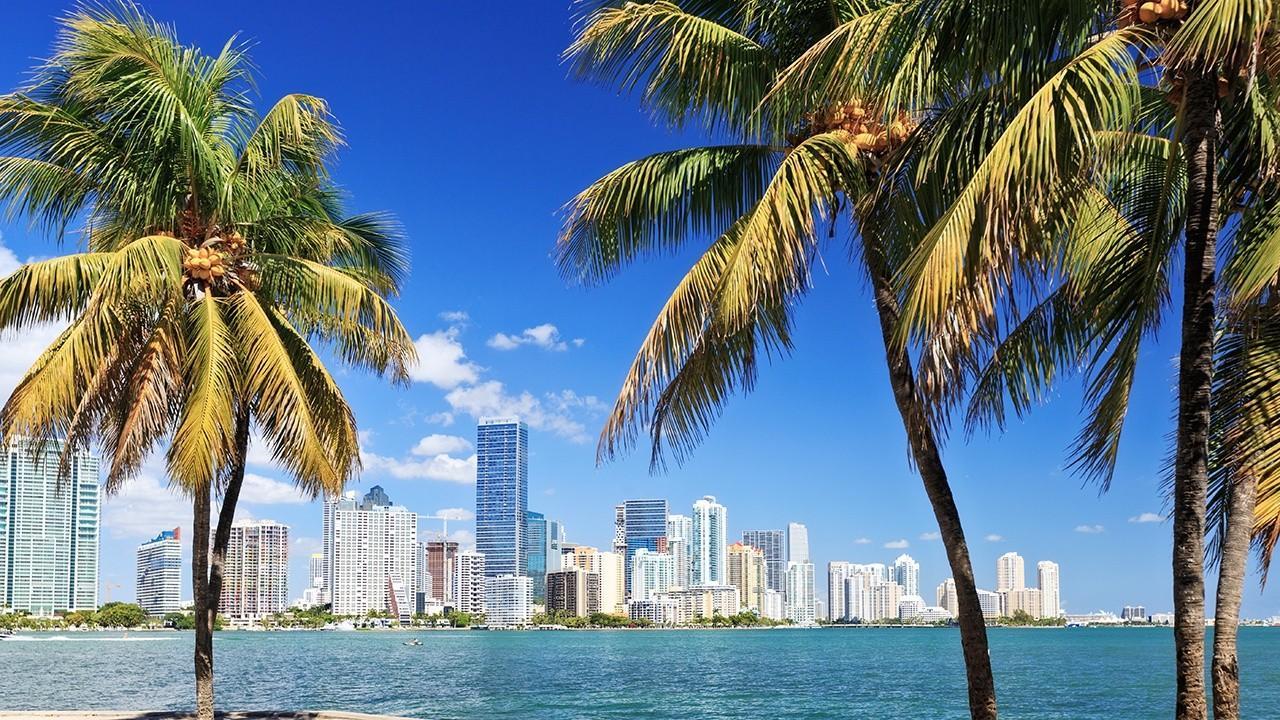 Miami Mayor Francis Suarez discusses Miami's plan to safely reopen the city amid coronavitus.