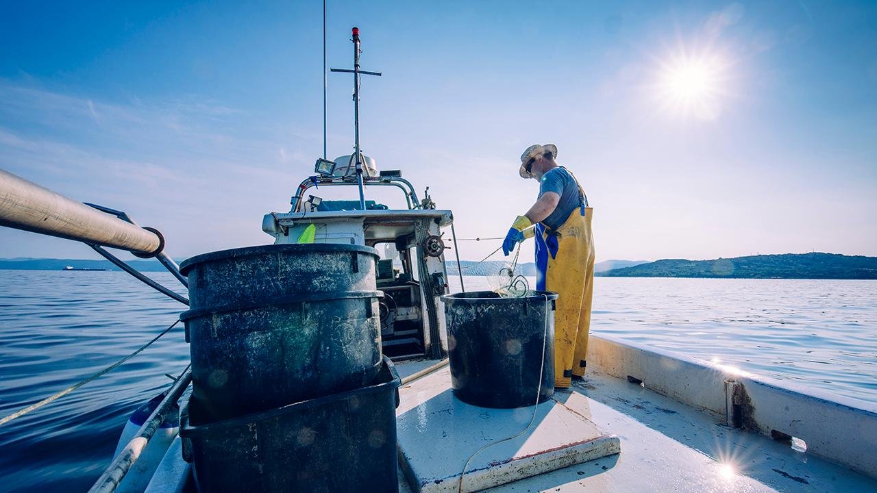 New Hampshire Community Seafood General Manager Andrea Tomlinson discusses fishermen allowing customers to pick up fresh catches dockside and exporting products to China.
