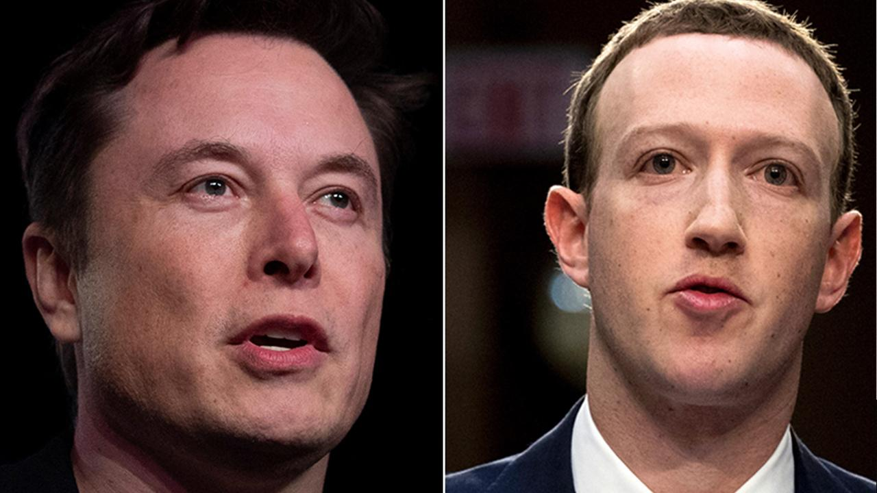 Tesla CEO Elon Musk and  Facebook CEO Mark Zuckerberg disagreed over stay-at-home orders during their earnings calls on Wednesday.