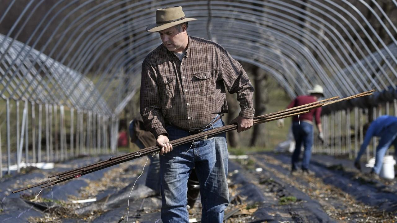 U.S. Agriculture Secretary Sonny Perdue discusses financial relief for farmers amid coronavirus and keeping the food supply chain up and running.