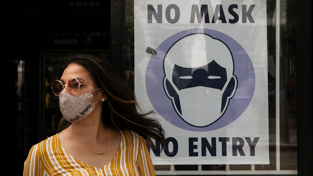 Fox News medical contributor Dr. Marc Siegel on the role of government in coronavirus recovery and enforcement of mask-wearing and social distancing.