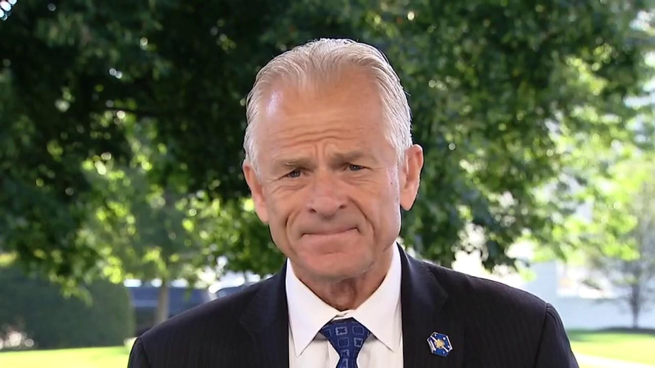 Director of the White House Office of Trade and Manufacturing Policy Peter Navarro on Kodak winning a government loan as part of a new manufacturing initiative.
