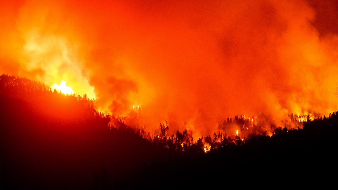 Copenhagen Consensus Center Director Bjorn Lomborg provides insight into what's causing wildfires in California.